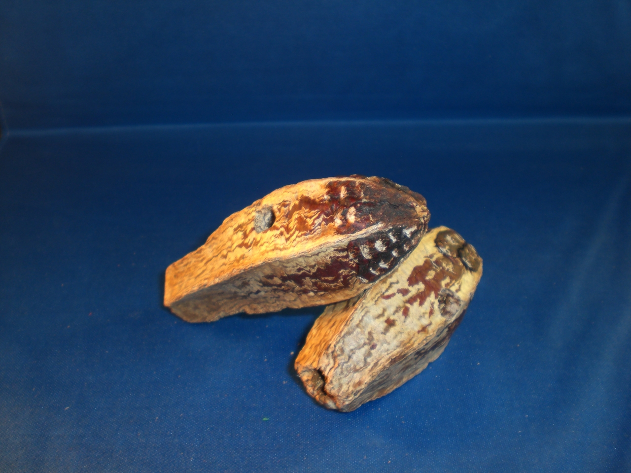 Drilled Whole Mahogany Pod